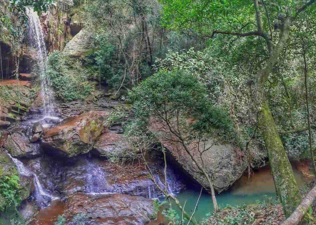 Bella naturaleza desde paraguay